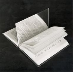 20070508162919-libro.jpg